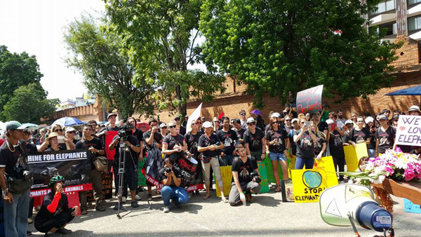 Global March For Elephants Chiang Mai