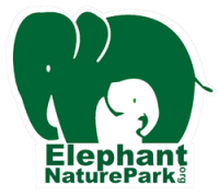 Image result for elephant nature park chiang mai