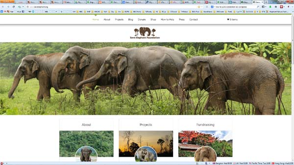 Save Elephant Website