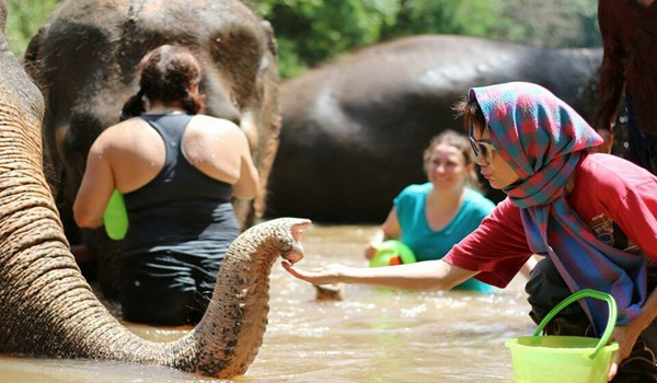 Learning to love and respect is the concept to help elephants.