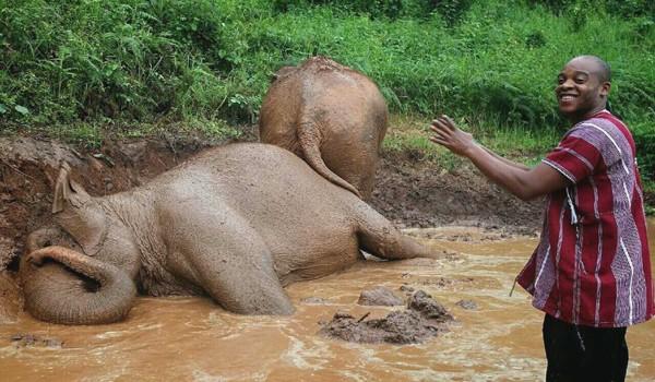The visitor enjoy watching elephant bath at Karen Elephant Experience program