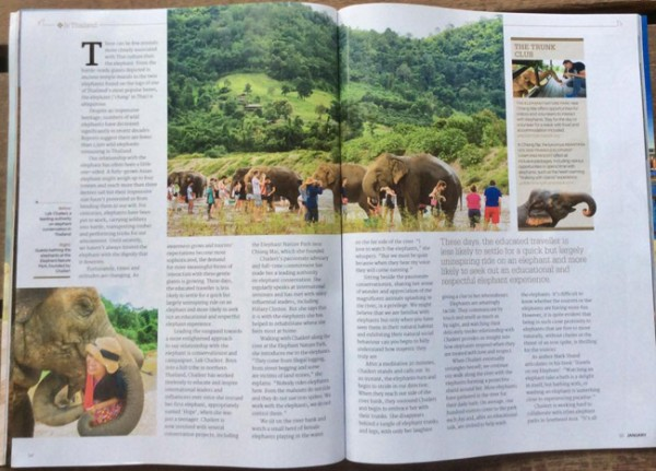 The story of Lek and elephants at our sanctuary