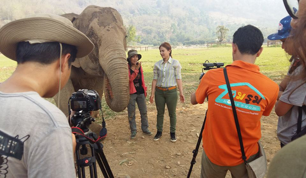 Thank You Royal Thai Army Radio And Television Channel 5 For Visiting Elephant Nature Park  And Help Us Spread The Word On Thai TV