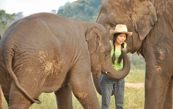 Lek Chailert and the baby elephant