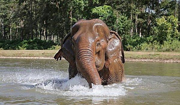 Beautiful blind lady, Mae Jampaa enjoy the river bath