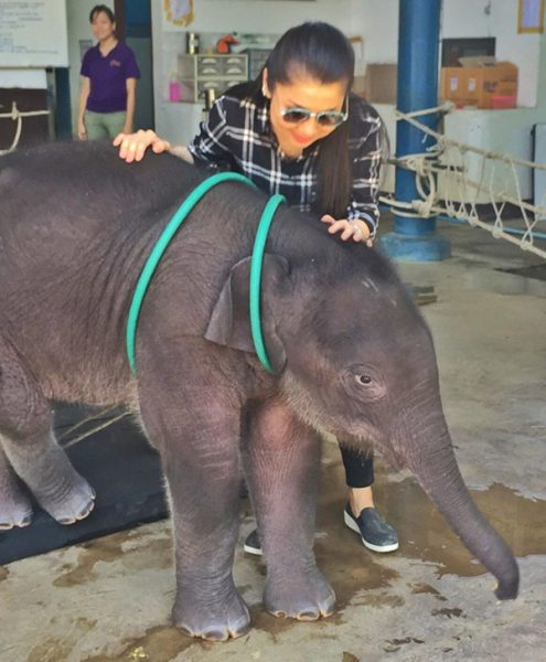 When Khun Kanjana Silpa-archa met little Dok Geaw at TECC