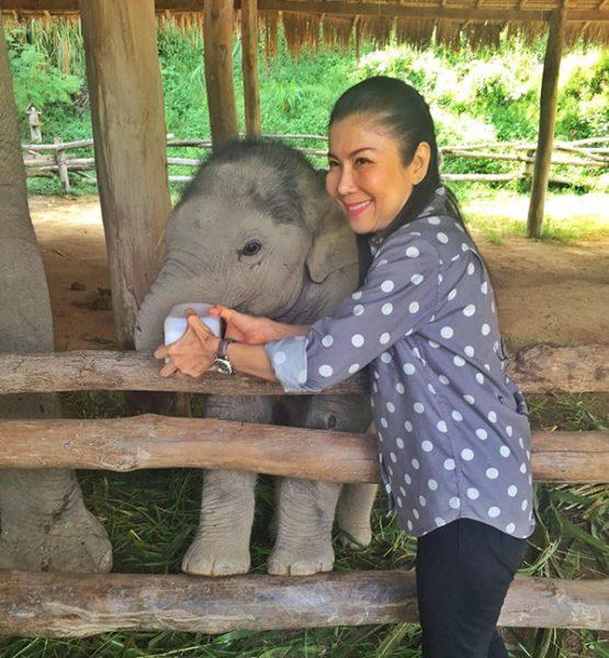 Khun Kanjana Silpa-archa fed milk to Dok Geaw while he was living at TECC